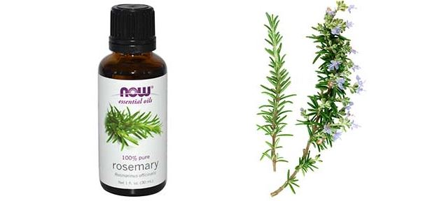 Rosemary Oil for Hair Growth, Benefits